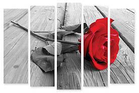 Модульна картина червона троянда