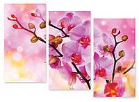 Модульная картина сиреневая орхидея