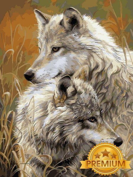 Картины по номерам 40×50 см. Babylon Premium (цветной холст + лак) Степные волки Художник Люси Билодо