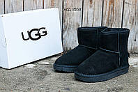 Ботинки зимние женские UGG угги