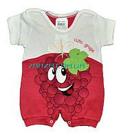 """Песочник """"Виноградик"""" для малышей.(Размеры 3-6-9 месяцев) - купить оптом со склада Одесса 7 км"""