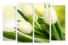 Модульна картина мокрі тюльпани