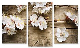 Модульна картина білі квіти на дереві