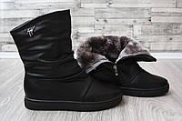 Зимние сапоги черные Занотти, фото 1