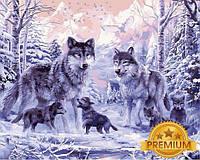 Картины по номерам 40×50 см. Babylon Premium Волчье семейство, фото 1
