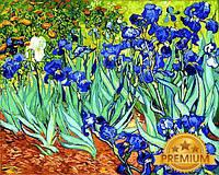 Картины по номерам 40×50 см. Babylon Premium Ирисы Художник Винсент Ван Гог, фото 1