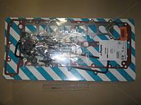 Комплект прокладок (пр-во PAYEN) CG7300