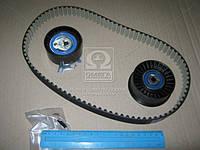 Ремкомплект ГРМ Opel Movano, Renault Master 77 01 472 329 (Пр-во SKF) VKMA 06503