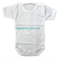 Боди однотонные для малышей. размеры 4-5-6 месяцев - купить оптом со склада Одесса 7 км