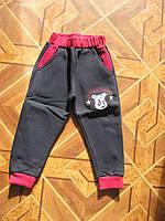 Детские спортивные брюки 3-х нитка с начесом  для мальчиков 2-5 лет Турция