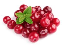 Клюква (Cranberry)