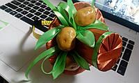"""Шляпка на ободке """"Картошка"""""""