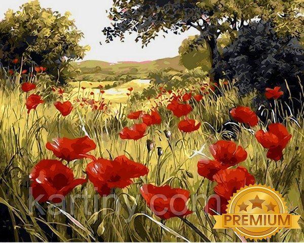 Картины по номерам 40×50 см. Babylon Premium (цветной холст + лак) Маковая поляна Художник Мари Дипналь