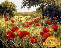 Картины по номерам 40×50 см. Babylon Premium (цветной холст + лак) Маковая поляна Художник Мари Дипналь, фото 1