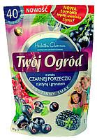 Чай фруктовый пакетированный Twoi Ogrod с черной смородиной, ежевикой и гранатом (40штх2г) Польша
