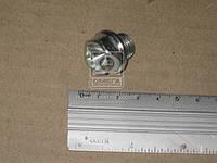 Пробка поддона масляного M14x1.5 L=11 (производитель Fischer) 822.362.001
