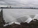 Агроволокно Greentex біле 23 г/м2 - 4,2х100 м, фото 4