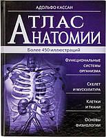 Книга Адольфо Тачлицки «Атлас анатомии» 978-966-14-8763-4