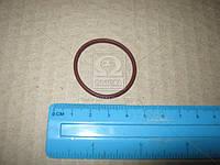 Уплотнительное кольцо ТНВД CR (CP2) 2469403022