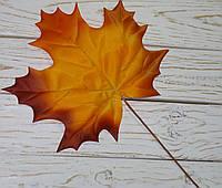 Ветка осеннего листка оранж с бордо премиум