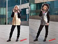 Костюм тройка Philipp Plein зимний теплый модный - штаны, свитшот и жилет с капюшоном 2 цвета Dm694