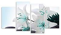 Модульная картина белые цветы макро