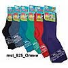 Носочки детские зимние махра р.12 арт.825