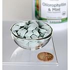 Chlorophyllin & Mint  хлорофилл и мята-жевательные таблетки  500 таб, фото 2