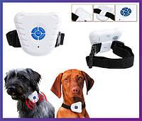 Ультразвуковой ошейник для собак антилай Bark Control Dog Collar