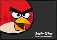 Коврик для детского творчества Angry Birds