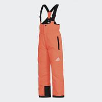 Детские брюки Adidas Performance Terrex Slush (Артикул: BR5972), фото 1