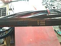 Приводной клиновой ремень А-1800 Basis, 1800 мм