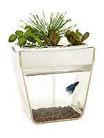АкваФерма Самоочищающийся аквариум,  который выращивает еду