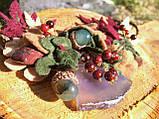 Агатовое намиста, Кольє ручної роботи з горобиною, Осіння колекція прикрас MGS, фото 4