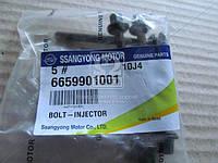 Болт крепления форсунки (производитель SsangYong) 6659901001