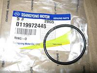 Уплотнительное кольцо (Производство SsangYong) 0119972448