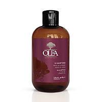 Зволожуючий Шампунь з маслом аргана і льону Dott. Solari Olea Shampoo 250 ml