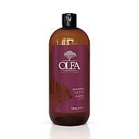 Зволожуючий Шампунь з маслом аргана і льону Dott. Solari Olea Shampoo 1000 ml