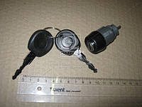 Сердцевинa для замка зажигания с ключом VW Passat 3 (пр-во Febi) 17714