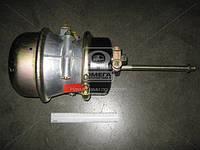 Камера тормозная с пружинным энергоакк (всборе ,тип 24/30)  953761000
