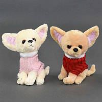 """Мягкая игрушка """"Собачка"""" С 22835 (300) 2 вида, высота 24см"""