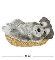 Статуэтка Собачка Шнауцер в корзине 16 см. Символ 2018 года