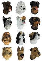 Магнит породы собак mix (C)
