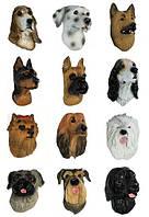 Магнит породы собак mix (B)