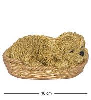 Статуэтка Собачка Ши-цу в корзине 16 см