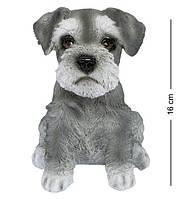 Статуэтка Собака Шнауцера 16 см