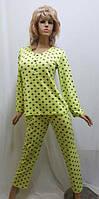Трикотажная женская пижама со штанами  659