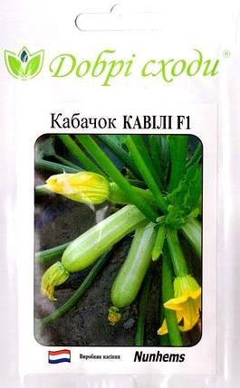 Семена кабачка Кавили 5шт ТМ ДОБРІ СХОДИ, фото 2