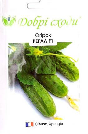 Семена огурца Регал 50шт ТМ ДОБРІ СХОДИ, фото 2