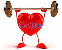 Coq10 и препараты для здоровья сердечно-сосудистой системы